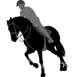horse ridingequestrian sport silhouettexa vector image