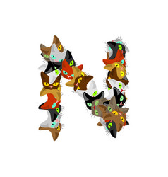 Letter n cat font pet alphabet symbol home animal vector