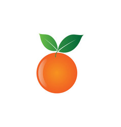 orange fruit design design template vector image