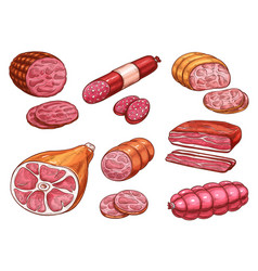 sausage sketch of beef and pork meat product vector image