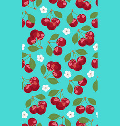 seamless pattern cherry fruits with blossom vector image