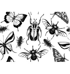 Tropical insects seamless pattern backdrop with vector