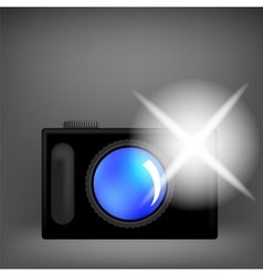 Digital Camera and Flash Isolated vector image