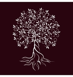 Olive tree outline curl silhouette icon vector