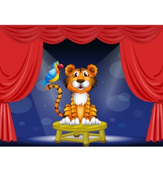 a tiger and a parrot in circus vector image