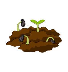 Growing plant in soil vector