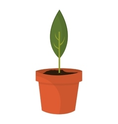 Sprout in pot icon vector
