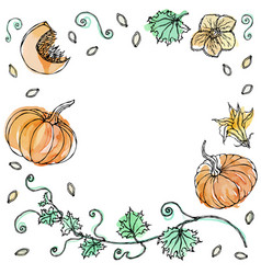 Watercolor vegetable pumpkin plant with leaves vector