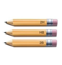 Yellow pencils vector