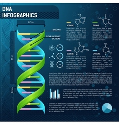 DNA for science infographics vector image vector image