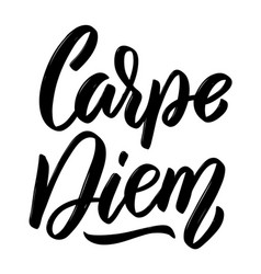 carpe diem hand drawn lettering isolated on white vector image vector image