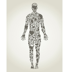 Parts body the person vector image vector image