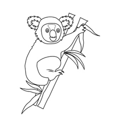 Australian koala icon in outline style isolated on vector