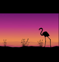 Collection stock flamingo silhouette scenery vector