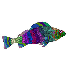Entangle stylized color fish hand drawn vector