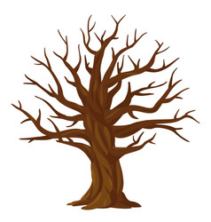 one old oak tree without leaves isolated vector image