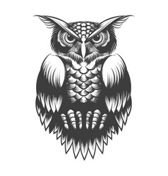 owl tattoo in engraving style vector image
