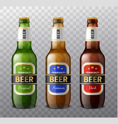 realistic different colors beer bottles 3d glass vector image