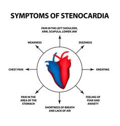 symptoms angina pectoris heart disease vector image