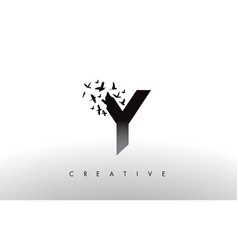Y logo letter with flock of birds flying and vector