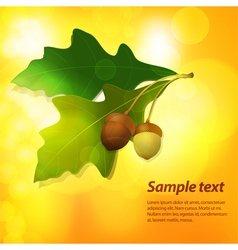 autumn acorn background vector image vector image