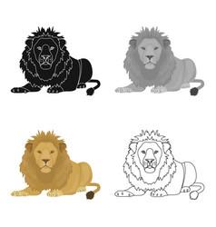 a lion a wild and ferocious predator leo the vector image vector image