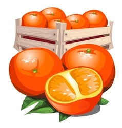 Box of fresh ripe orange with leaves vector image vector image