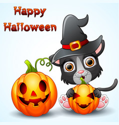 cat cartoon with a witch hat holding pumpkin vector image