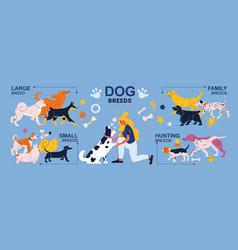 Dog breeds infographics vector