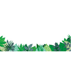 green leaves horizontal banner or poster vector image