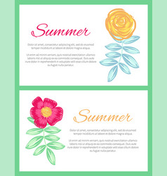 summer set of two posters vector image