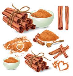 Cinnamon sticks and powder collection vector