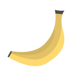Ripe banana isolated vector image vector image