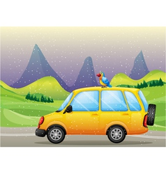 A car with a parrot vector image vector image