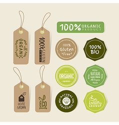 Set of organic food tag and label sticker vector image