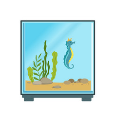 colorful of cube aquarium with blue vector image