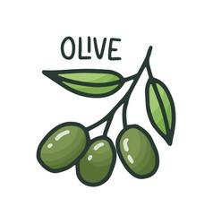organic ingredient - olive italian pizza vegan vector image