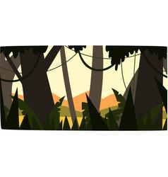 Sunrise in tropical jungle greenwood background vector