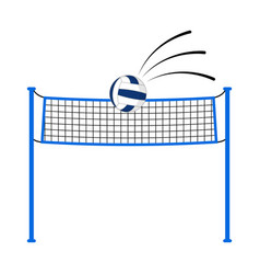 volleyball ball on a net vector image
