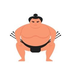 flat style of sumo wrestler vector image