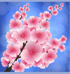 spring pink flowers vector image vector image