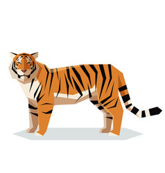 Flat geometric tiger vector
