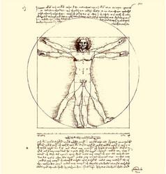 Leonardo da vinci vitruvian man sketch page vector