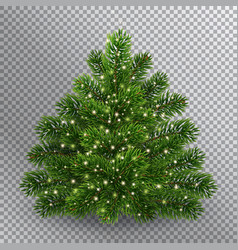 Realistic christmas green tree without toys vector