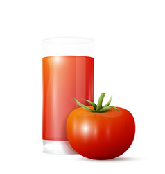 Tomato and glass of juice vector