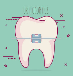 Tooth with orthodontics dental care icon vector