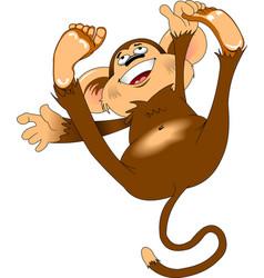 cheerful monkey vector image vector image