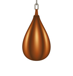 punching bag for boxing in brown design vector image