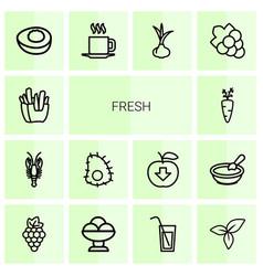 14 fresh icons vector