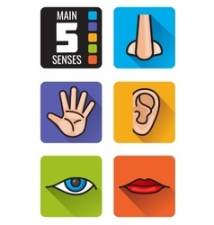 Five senses nose hand mouth eye ear vector
